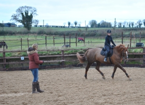 The horse and I in action