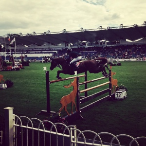 Ring side seats to the show jumping action